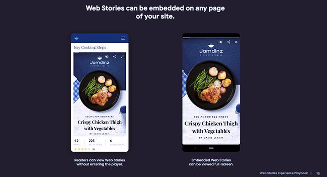 Embedded Web Story.